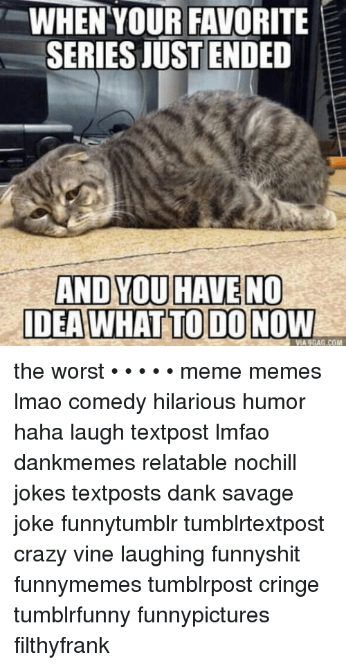 9gag, Crazy, and Dank: WHENYOUR FAVORITE  SERIES JUSTENDED  AND YOU HAVE NO  DEA WHAT TO DONOW  VIA 9GAG.COM the worst • • • • • meme memes lmao comedy hilarious humor haha laugh textpost lmfao dankmemes relatable nochill jokes textposts dank savage joke funnytumblr tumblrtextpost crazy vine laughing funnyshit funnymemes tumblrpost cringe tumblrfunny funnypictures filthyfrank