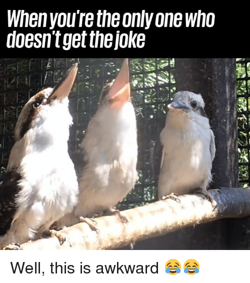 Dank, Awkward, and Only One: Whenyou're the only one who  doesnt get thejoke Well, this is awkward 😂😂