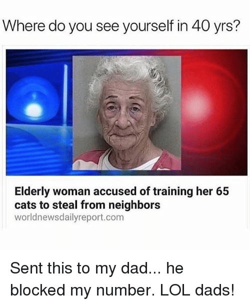 Cats, Dad, and Lol: Where do you see yourself in 40 yrs?  Elderly woman accused of training her 65  cats to steal from neighbors  worldnewsdailyreport.com Sent this to my dad... he blocked my number. LOL dads!