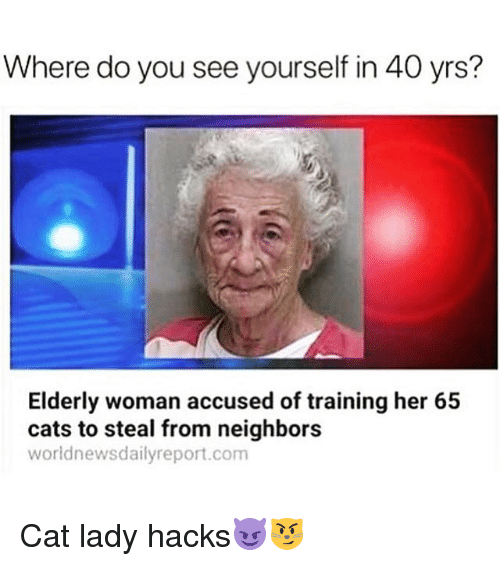 Cats, Funny, and Neighbors: Where do you see yourself in 40 yrs?  Elderly woman accused of training her 65  cats to steal from neighbors  worldnewsdailyreport.com Cat lady hacks😈😼