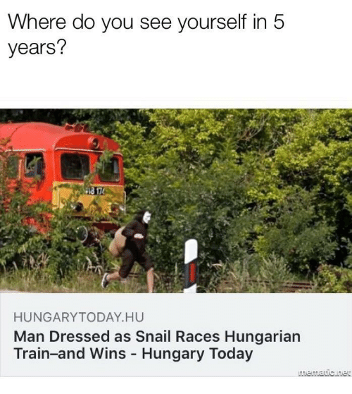 Today, Train, and Hungary: Where do you see yourself in 5  years?  HUNGARYTODAY HU  Man Dressed as Snail Races Hungarian  Train-and Wins Hungary Today
