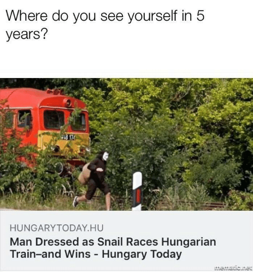 Train: Where do you see yourself in 5  years?  HUNGARYTODAY.HU  Man Dressed as Snail Races Hungarian  Train-and Wins - Hungary Today  LAmematic.net