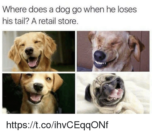 Memes, Retail, and 🤖: Where does a dog go when he loses  his tail? A retail store https://t.co/ihvCEqqONf