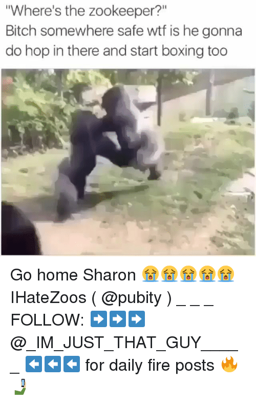 """Bitch, Boxing, and Fire: Where's the zookeeper?""""  Bitch somewhere safe wtf is he gonna  do hop in there and start boxing too Go home Sharon 😭😭😭😭😭 IHateZoos ( @pubity ) _ _ _ FOLLOW: ➡➡➡@_IM_JUST_THAT_GUY_____ ⬅⬅⬅ for daily fire posts 🔥🤳🏼"""