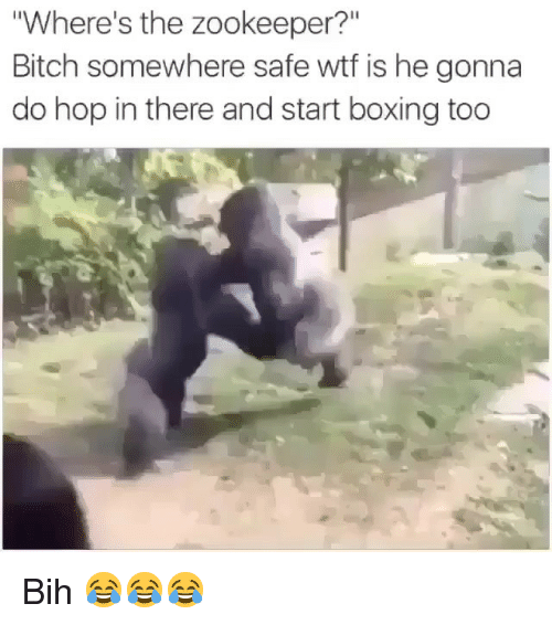 "zookeeper: Where's the zookeeper?""  Bitch somewhere safe wtf is he gonna  do hop in there and start boxing too Bih 😂😂😂"