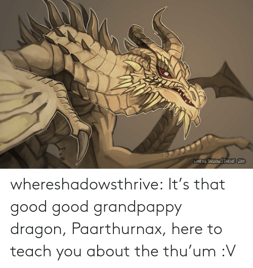 dragon: WHERESHADOWS THRIVE 2018 whereshadowsthrive:  It's that good good grandpappy dragon, Paarthurnax, here to teach you about the thu'um :V