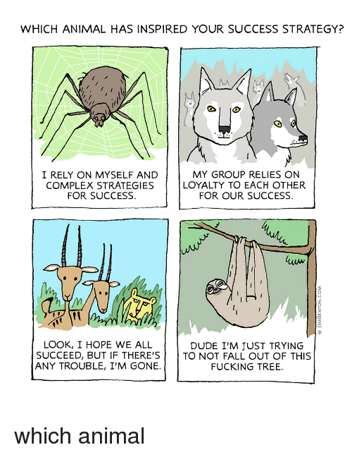 Complex, Dude, and Fall: WHICH ANIMAL HAS INSPIRED YOUR SUCCESS STRATEGY?  I RELY ON MYSELF AND  COMPLEX STRATEGIES  FOR SUCCESS.  MY GROUP RELIES ON  LOYALTY TO EACH OTHER  FOR OUR SUCCESS  LOOK, I HOPE WE ALL  SUCCEED, BUT IF THERE'STO NOT FALL OUT OF THIS  ANY TROUBLE, I'M GONE.  DUDE I'M JUST TRYING  FUCKING TREE. which animal