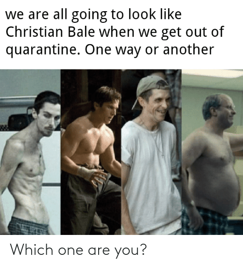 Which: Which one are you?