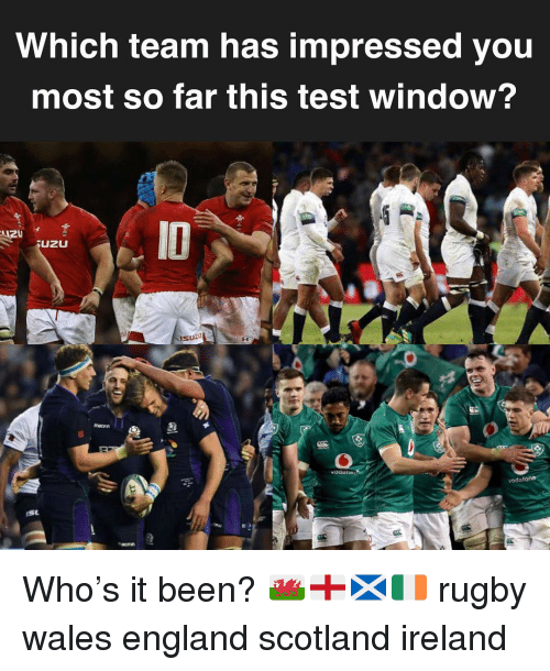 England, Ireland, and Scotland: Which team has impressed you  most so far this test window?  UZU  sużu Who's it been? 🏴🏴🏴🇮🇪 rugby wales england scotland ireland