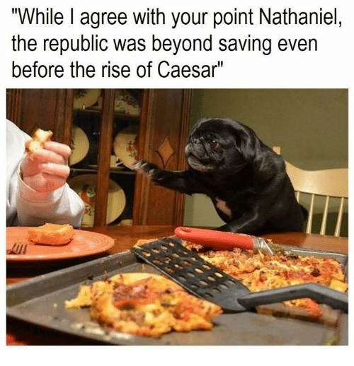 """Rough Roman: """"While I agree with your point Nathaniel,  the republic was beyond saving even  before the rise of Caesar"""""""