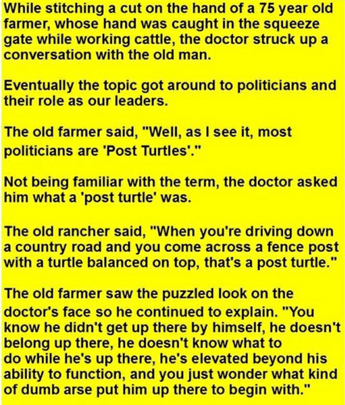 "Doctor, Driving, and Dumb: While stitching a cut on the hand of a 75 year old  farmer, whose hand was caught in the squeeze  gate while working cattle, the doctor struck up a  conversation with the old man.  Eventually the topic got around to politicians  their role as our leaders.  The old farmer said, ""Well, as I see it, most  politicians are 'Post Turtles.""  Not being familiar with the term, the doctor asked  him what a 'post turtle' was.  The old rancher said, ""When you're driving down  a country road and you come across a fence post  with a turtle balanced on top, that's a post turtle.""  The old farmer saw the puzzled look on the  doctor's face so he continued to explain. ""You  know he didn't get up there by himself, he doesn't  belong up there, he doesn't know what to  do while he's up there, he's elevated beyond his  ability to function, and you just wonder what kind  of dumb arse put him up there to begin with."""