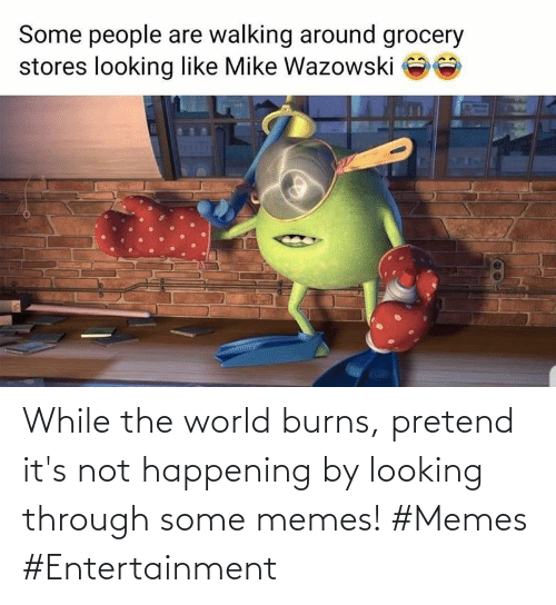 entertainment: While the world burns, pretend it's not happening by looking through some memes! #Memes #Entertainment
