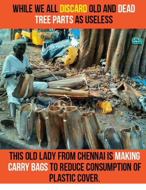 Dead Tree: WHILE WE ALL  DISCARD  OLD AND  DEAD  TREE PARTS AS USELESS  THIS OLD LADY FROM CHENNAI IS  MAKING  CARRY BAGS TO REDUCE CONSUMPTION OF  PLASTIC COVER