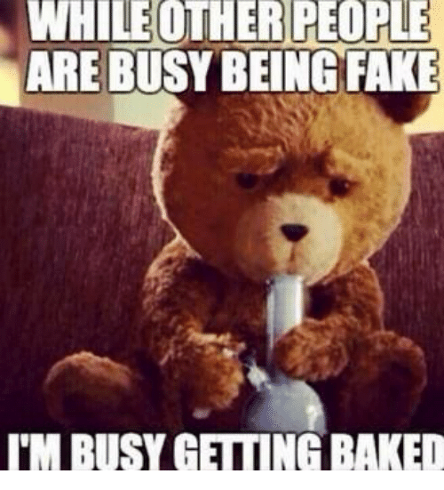 Baked, Fake, and Memes: WHILEOTHER  PEOPLE  ARE BUSY BEING FAKE  I'M BUSY GETTING BAKED