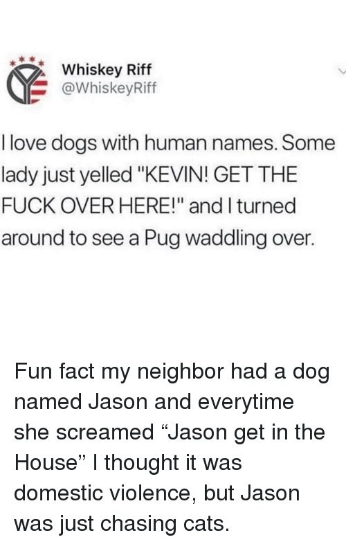 """Cats, Dogs, and Love: Whiskey Riff  @WhiskeyRiff  I love dogs with human names. Some  lady just yelled """"KEVIN! GET THE  FUCK OVER HERE!"""" and I turned  around to see a Pug waddling over. Fun fact my neighbor had a dog named Jason and everytime she screamed """"Jason get in the House"""" I thought it was domestic violence, but Jason was just chasing cats."""
