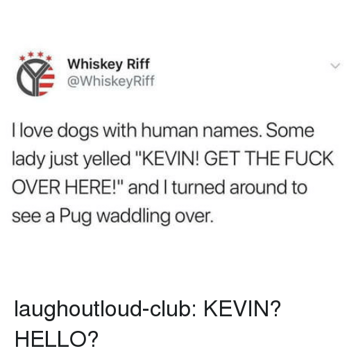"""Club, Dogs, and Hello: Whiskey Riff  @WhiskeyRiff  I love dogs with human names. Some  lady just yelled """"KEVIN! GET THE FUCK  OVER HERE!"""" and I turned around to  see a Pug waddling over. laughoutloud-club:  KEVIN? HELLO?"""