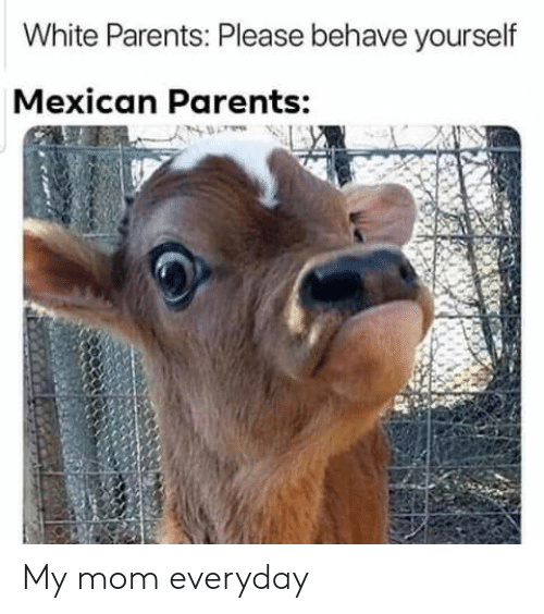 behave: White Parents: Please behave yourself  Mexican Parents: My mom everyday