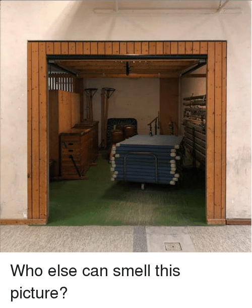 Smell, Who, and Can: Who else can smell this picture?