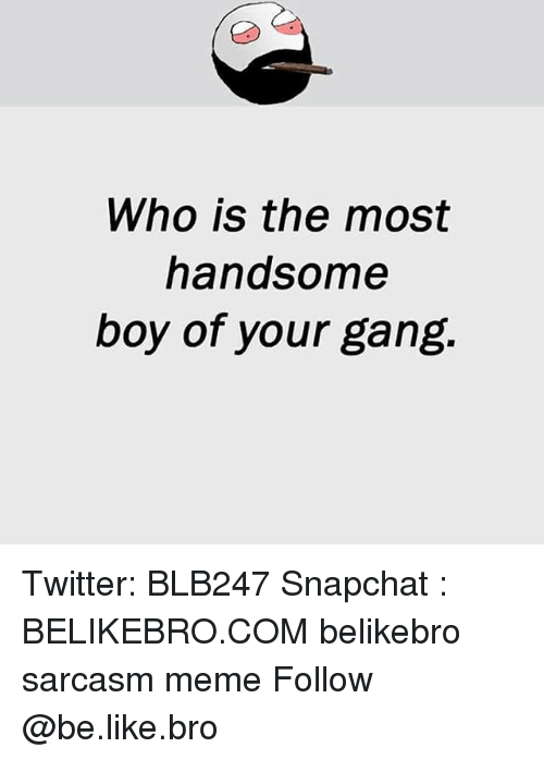 Be Like, Meme, and Memes: Who is the most  handsome  boy of your gang Twitter: BLB247 Snapchat : BELIKEBRO.COM belikebro sarcasm meme Follow @be.like.bro