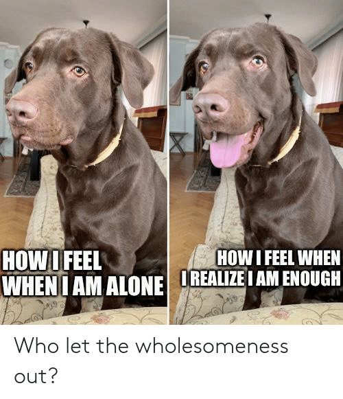 out: Who let the wholesomeness out?