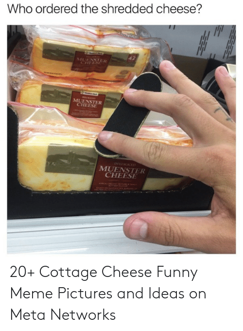 Funny, Meme, and Saw: Who ordered the shredded cheese?  42  MUENSTER  CHEESE  MUENSTER  CHEESE  e  DELI SLICED  MUENSTER  CHEESE  AUNCA CRANY EARUE AANC  NAOV ON Saw A 20+ Cottage Cheese Funny Meme Pictures and Ideas on Meta Networks