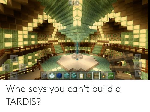 Says You: Who says you can't build a TARDIS?