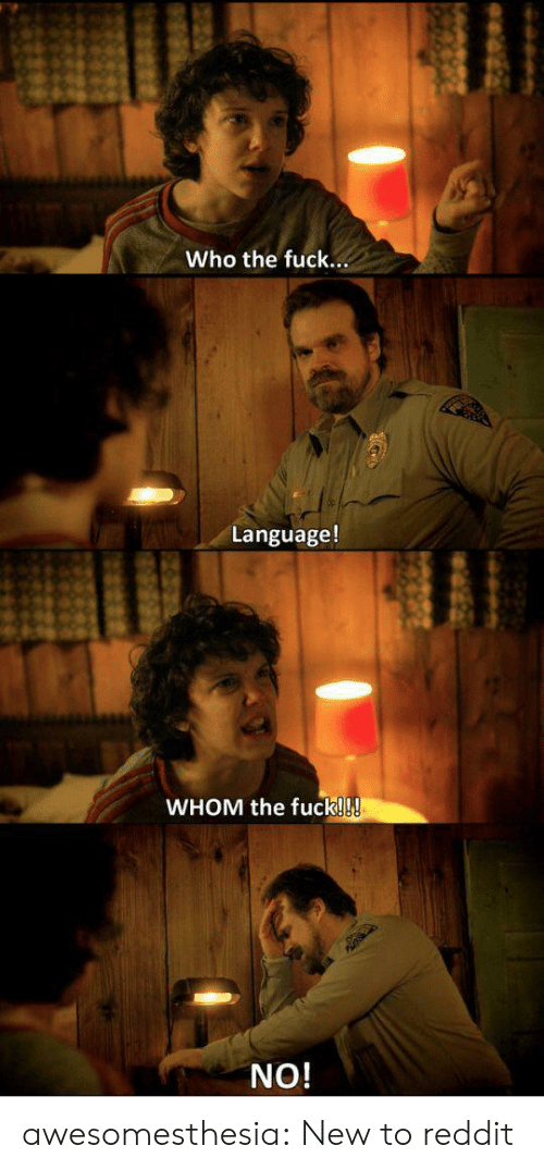 who the fuck: Who the fuck...  Language!  WHOM the fuck!!!  NO! awesomesthesia:  New to reddit