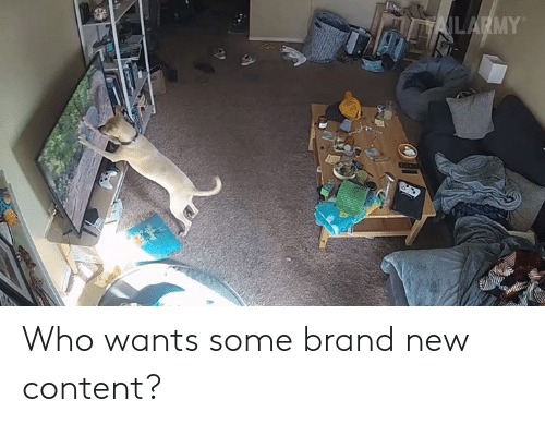 Memes, Content, and Brand New: Who wants some brand new content?