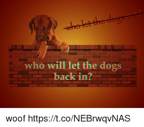 Dogs, Back, and Who: who will let the dogs  back in? woof https://t.co/NEBrwqvNAS