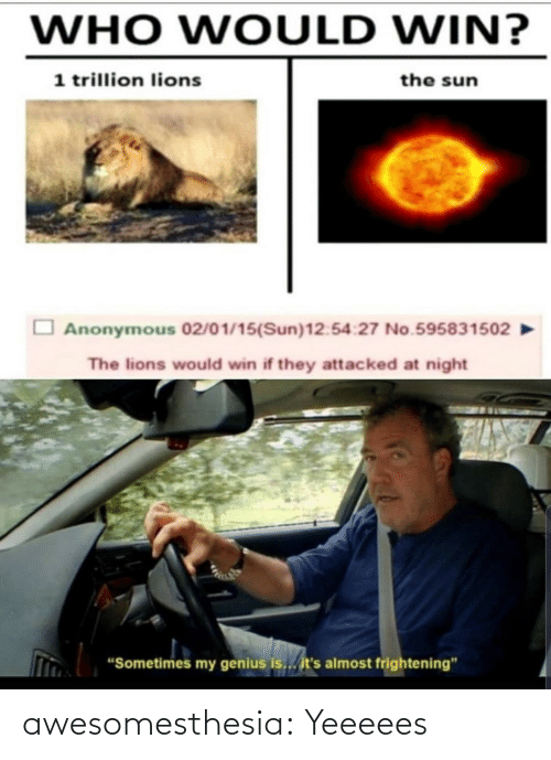 "Lions: WHO WOULD WIN?  1 trillion lions  the sun  Anonymous 02/01/15(Sun)12:54:27 No.595831502  The lions would win if they attacked at night  ""Sometimes my genius is... it's almost frightening"" awesomesthesia:  Yeeeees"