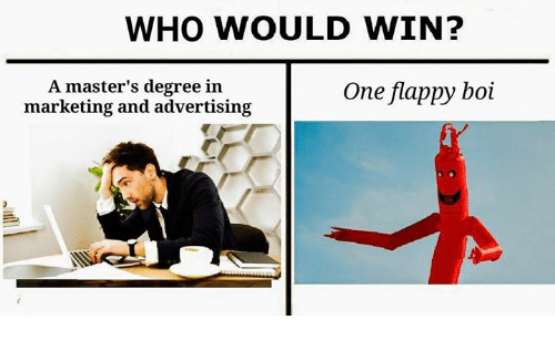 Flappy: WHO WOULD WIN?  A master's degree in  marketing and advertising  One flappy boi