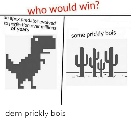 Apex, Predator, and Apex Predator: who would win?  an apex predator evolved  to perfection over millions  of years  some prickly bois dem prickly bois