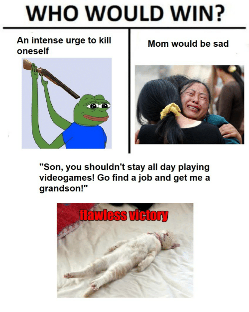 """flawless: WHO WOULD WIN?  An intense urge to kill  oneself  Mom would be sad  """"Son, you shouldn't stay all day playing  videogames! Go find a job and get me a  grandson!""""  flawless victory"""