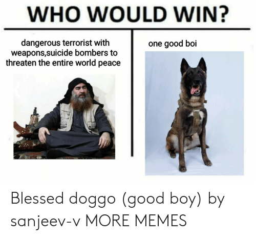 Good Boi: WHO WOULD WIN?  dangerous terrorist with  weapons,suicide bombers to  threaten the entire world peace  one good boi Blessed doggo (good boy) by sanjeev-v MORE MEMES
