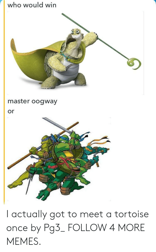 Master Oogway: who would win  master oogway  or I actually got to meet a tortoise once by Pg3_ FOLLOW 4 MORE MEMES.