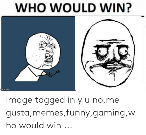 WHO WOULD WIN? Ngflipcom Image Tagged in Y U Nome