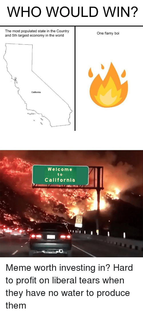 Meme, California, and Water: WHO WOULD WIN?  The most populated state in the Country  and 5th largest economy in the world  One flamy boi  California  Welcome  to  Callfornia Meme worth investing in? Hard to profit on liberal tears when they have no water to produce them