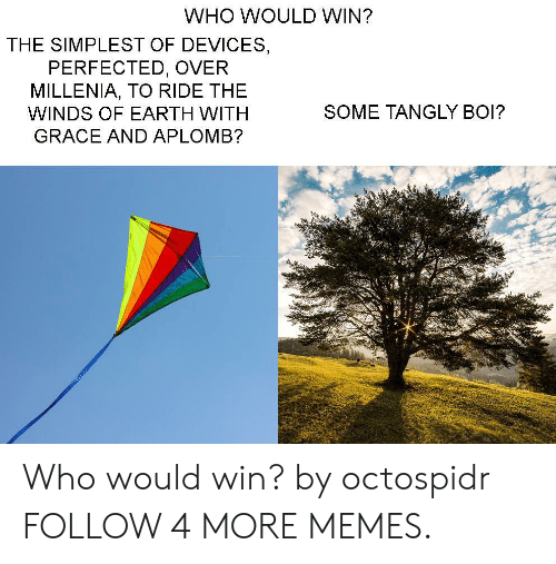 Dank, Memes, and Target: WHO WOULD WIN?  THE SIMPLEST OF DEVICES  PERFECTED, OVER  MILLENIA, TO RIDE THE  SOME TANGLY BOI?  WINDS OF EARTH WITH  GRACE AND APLOMB? Who would win? by octospidr FOLLOW 4 MORE MEMES.