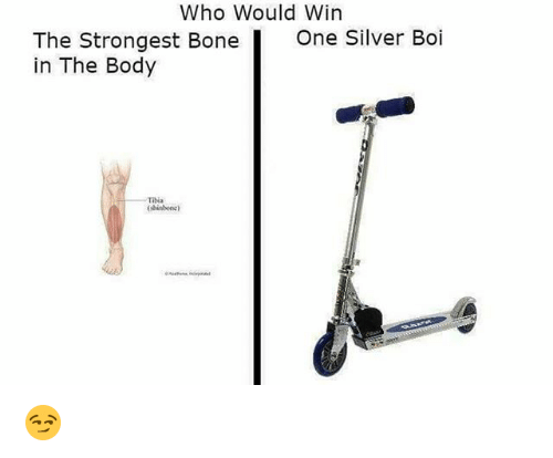 Silver, Dank Memes, and Tibia: Who Would Win  The Strongest Bone  in The Body  One Silver Boi  TIbia  (shinbonc) 😏