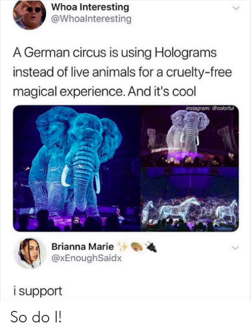 Circus: Whoa Interesting  @Whoalnteresting  A German circus is using Holograms  instead of live animals for a cruelty-free  magical experience. And it's cool  instagram: @colorful  Brianna Marie  @xEnoughSaidx  isupport So do I!