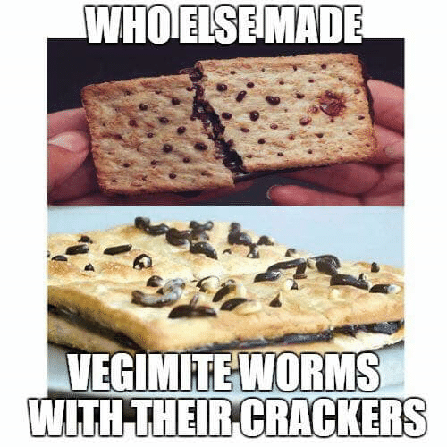 Memes, 🤖, and Crackers: WHOELSEMADE  VEGIMITEWORMS  WITH THEIR CRACKERS