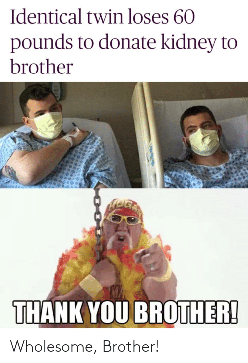brother: Wholesome, Brother!