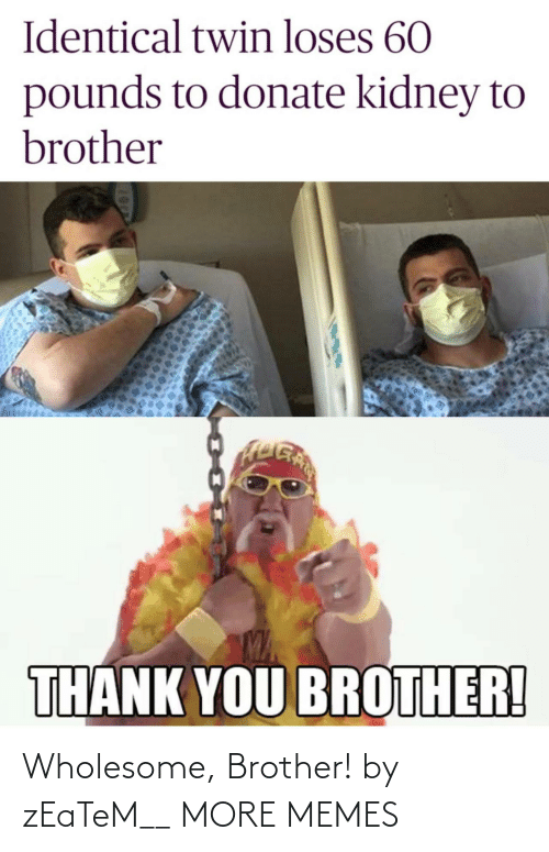 brother: Wholesome, Brother! by zEaTeM__ MORE MEMES