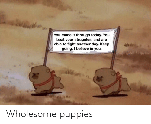 Wholesome: Wholesome puppies