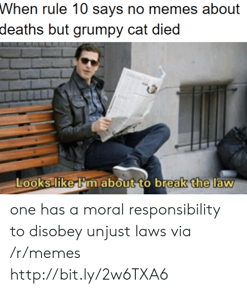 one has a moral responsibility to disobey unjust laws: Whon ruke 10 says no meos about  deaths but grumpy cat died  the  Looks liker'm about to break  law one has a moral responsibility to disobey unjust laws via /r/memes http://bit.ly/2w6TXA6