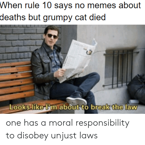 one has a moral responsibility to disobey unjust laws: Whon ruke 10 says no meos about  deaths but grumpy cat died  the  Looks liker'm about to break  law one has a moral responsibility to disobey unjust laws