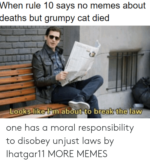 one has a moral responsibility to disobey unjust laws: Whon ruke 10 says no meos about  deaths but grumpy cat died  the  Looks liker'm about to break  law one has a moral responsibility to disobey unjust laws by Ihatgar11 MORE MEMES