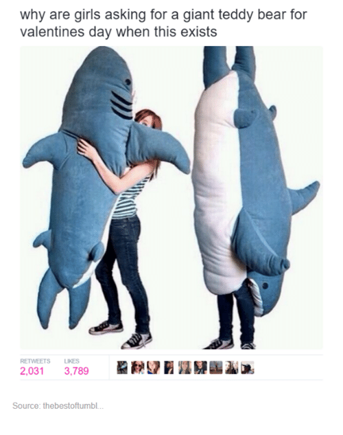 Why Are Girls: why are girls asking for a giant teddy bear for  valentines day when this exists  RETWEETS LIKES  2,031 3,789  Source: thebestoftumbl