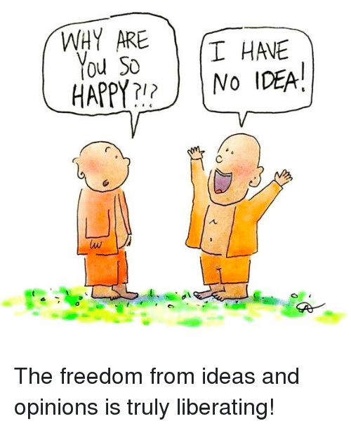 Memes, Happy, and Freedom: WHY ARE  T HAVE  You So  NO IDEA!  HAPPY The freedom from ideas and opinions is truly liberating!