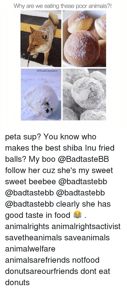 Shiba Inu: Why are we eating these poor animals?  @Rudecapybarav peta sup? You know who makes the best shiba Inu fried balls? My boo @BadtasteBB follow her cuz she's my sweet sweet beebee @badtastebb @badtastebb @badtastebb @badtastebb clearly she has good taste in food 😂 . animalrights animalrightsactivist savetheanimals saveanimals animalwelfare animalsarefriends notfood donutsareourfriends dont eat donuts